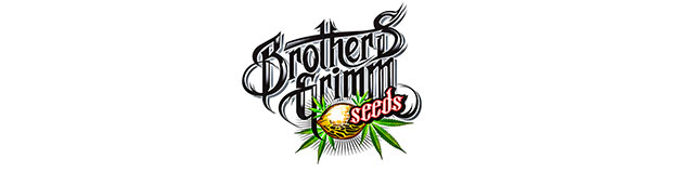 Brothers Grimm Seed