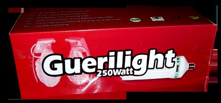 250 watt CFL Guerilght bloei