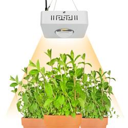 Verlichting planten
